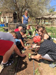 Youth Garden Project Internships