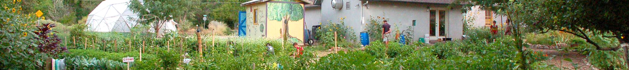 Youth Garden Project in Moab